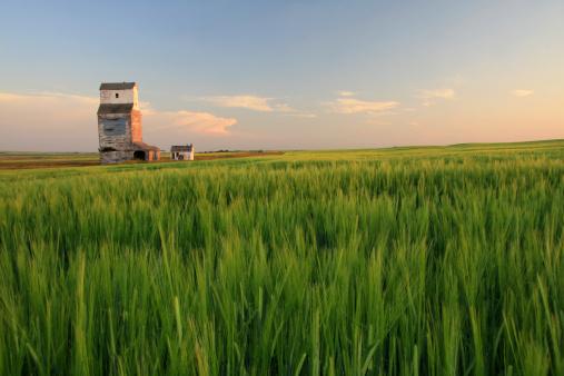 Wooden Grain Elevator on the Prairie 157279391