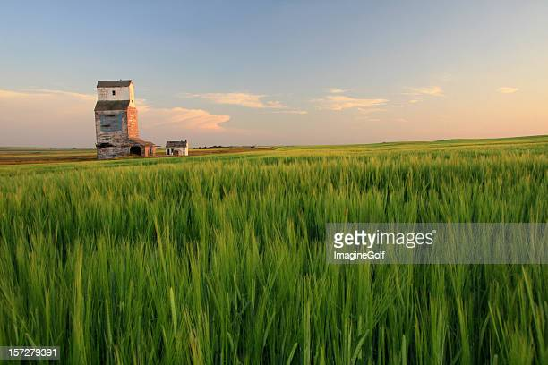 Wooden Grain Elevator on the Prairie