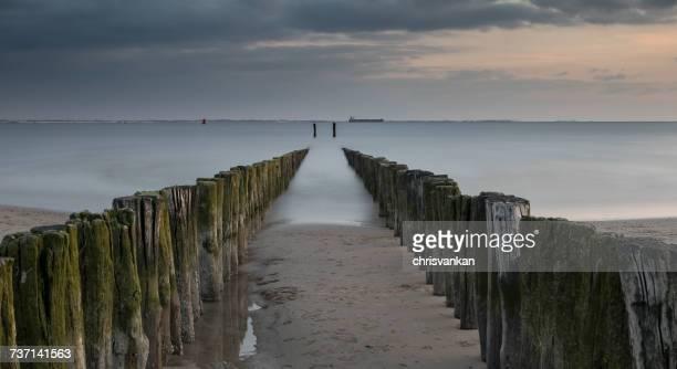 Wooden groynes on the beach, Vlissingen, Zeeland, Holland