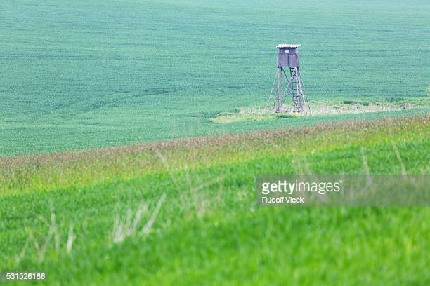 wooden high seat for hunters in the fields - czech hunters stock photos and pictures
