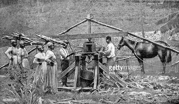 A wooden horsepowered suger cane crushing mill West Indies 1922 From Peoples of All Nations Their Life Today and the Story of Their Past volume I...