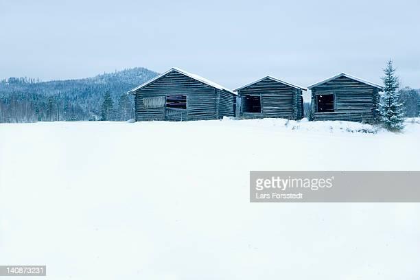 Wooden houses in snowy field
