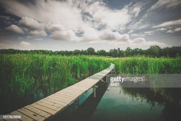 jetée en bois au lac beetzsee dans le brandebourg, allemagne - land brandebourg photos et images de collection