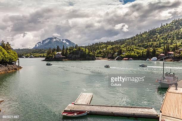 wooden jetty on lake, halibut cove, kachemak bay, alaska, usa - kachemak bay stock pictures, royalty-free photos & images