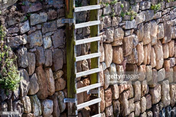 a wooden ladder up a stone wall. - fife scotland stock pictures, royalty-free photos & images
