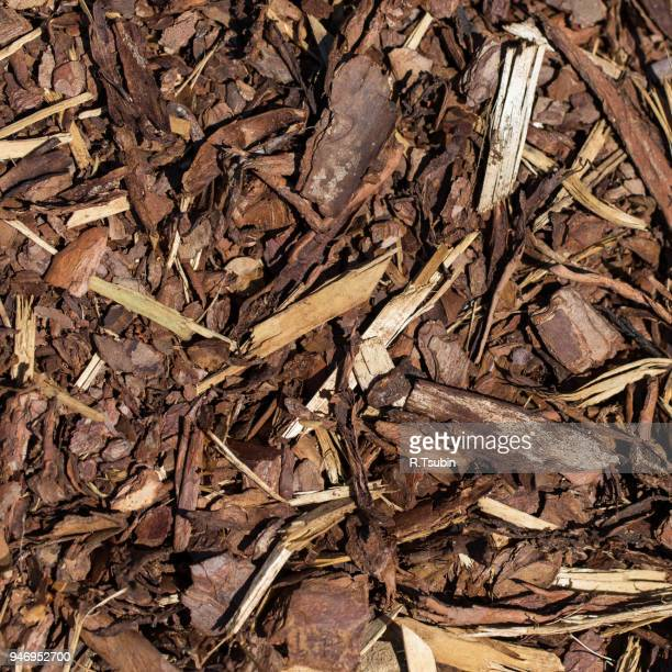 wooden mulch ground's fragment as an abstract background composition - humus photos et images de collection