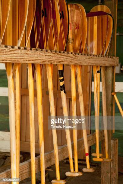 wooden outrigger canoe paddles in a rack - timothy hearsum stock pictures, royalty-free photos & images