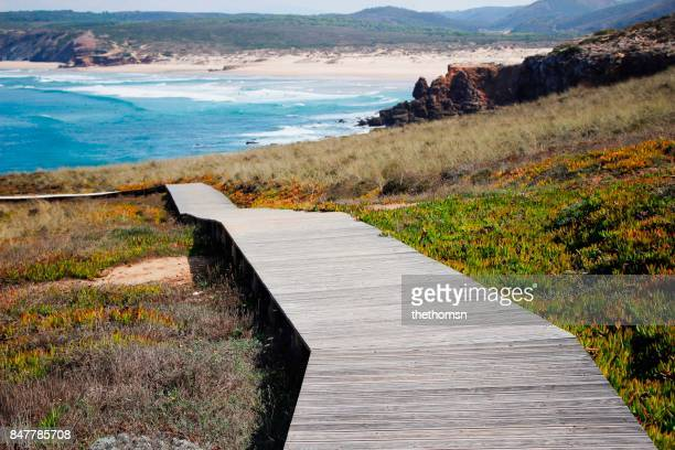 Wooden path down to beach, Algarve, Portugal