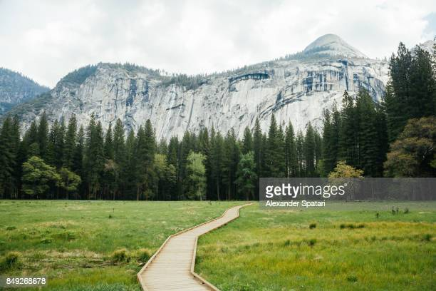 wooden path in yosemite valley, california, usa - yosemite valley stock photos and pictures