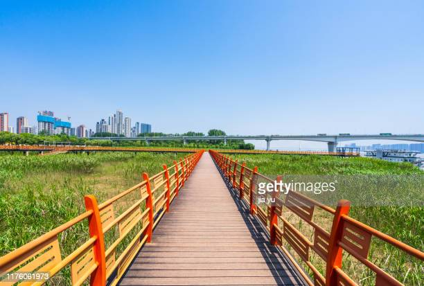 a wooden path towards modern city,wuhan - wuhan stock pictures, royalty-free photos & images