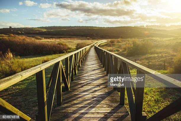 wooden pathway - veiligheidshek stockfoto's en -beelden