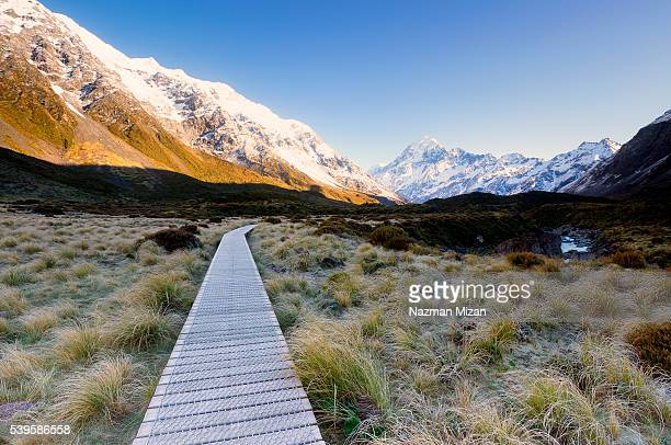wooden pathway provided for hikers to access the national park. - new zealand foto e immagini stock