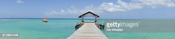 wooden pier at beach of pigeon point on tropical island of tobago in trinidad and tobago in the caribbean - marina wheeler foto e immagini stock