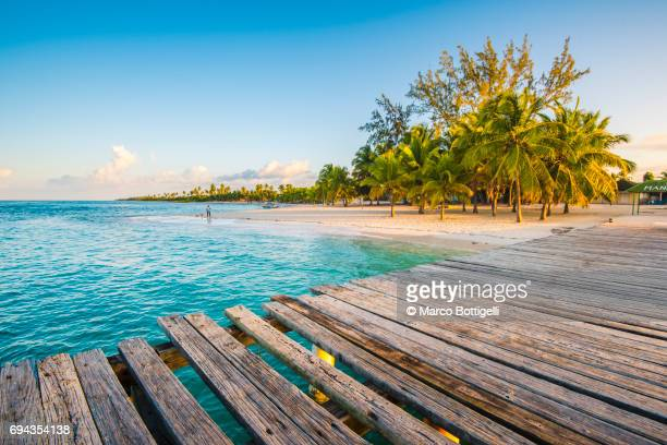 wooden pier at mano juan. saona island, caribbean sea. - dominican republic stock pictures, royalty-free photos & images