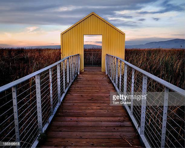 wooden pier in grass - tom grubbe stock pictures, royalty-free photos & images