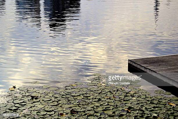 Wooden pier on the Danube river in Vienna