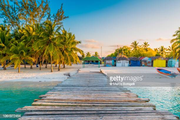 wooden pier to a tropical beach, saona island - island stock pictures, royalty-free photos & images