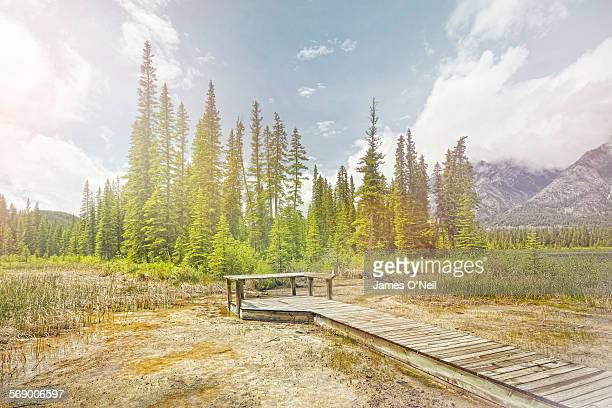 wooden pier with trees and distant mountains