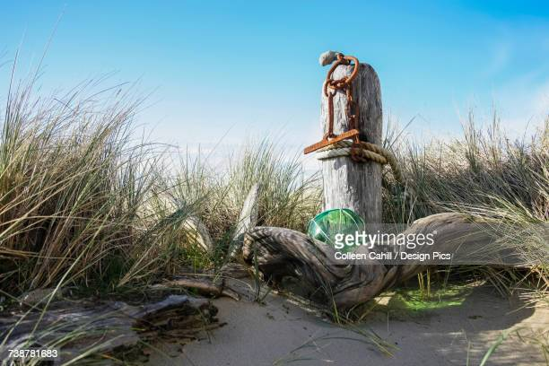 wooden post with rusted chain on the beach among tall grass and a blue sky - blue balls pics stock pictures, royalty-free photos & images