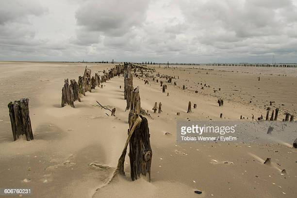 Wooden Posts In Sand