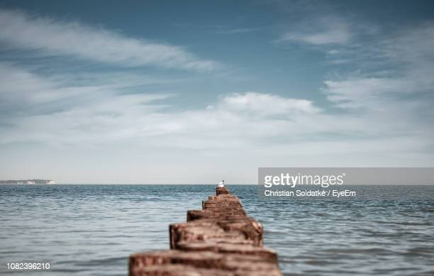 wooden posts in sea against sky - christian soldatke imagens e fotografias de stock