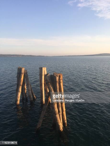 wooden posts in sea against sky - loredana perugini stock pictures, royalty-free photos & images