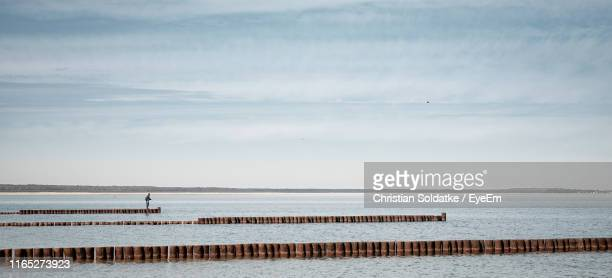 wooden posts in sea against sky - christian soldatke stock pictures, royalty-free photos & images