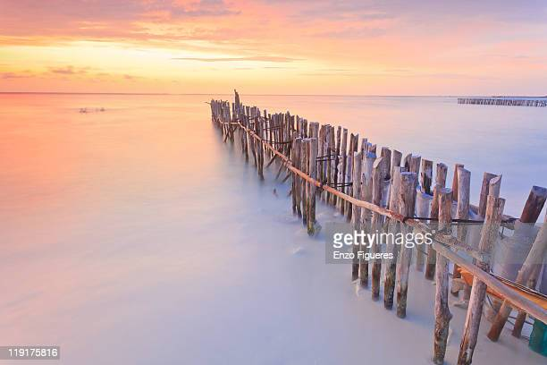 wooden posts into  sea - isla mujeres stock pictures, royalty-free photos & images