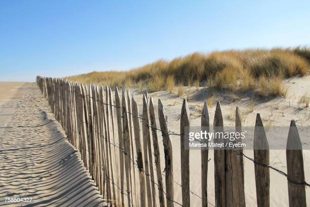 wooden posts on beach against clear sky - hollande méridionale photos et images de collection