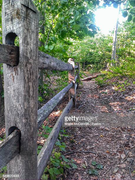 wooden railing on forest - mcconnell stock pictures, royalty-free photos & images