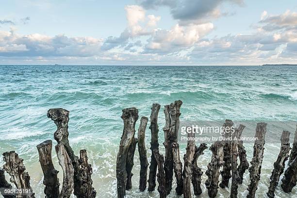 Wooden sea Defence-St Malo