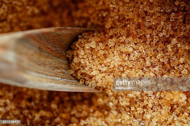 Wooden shovel in brown sugar