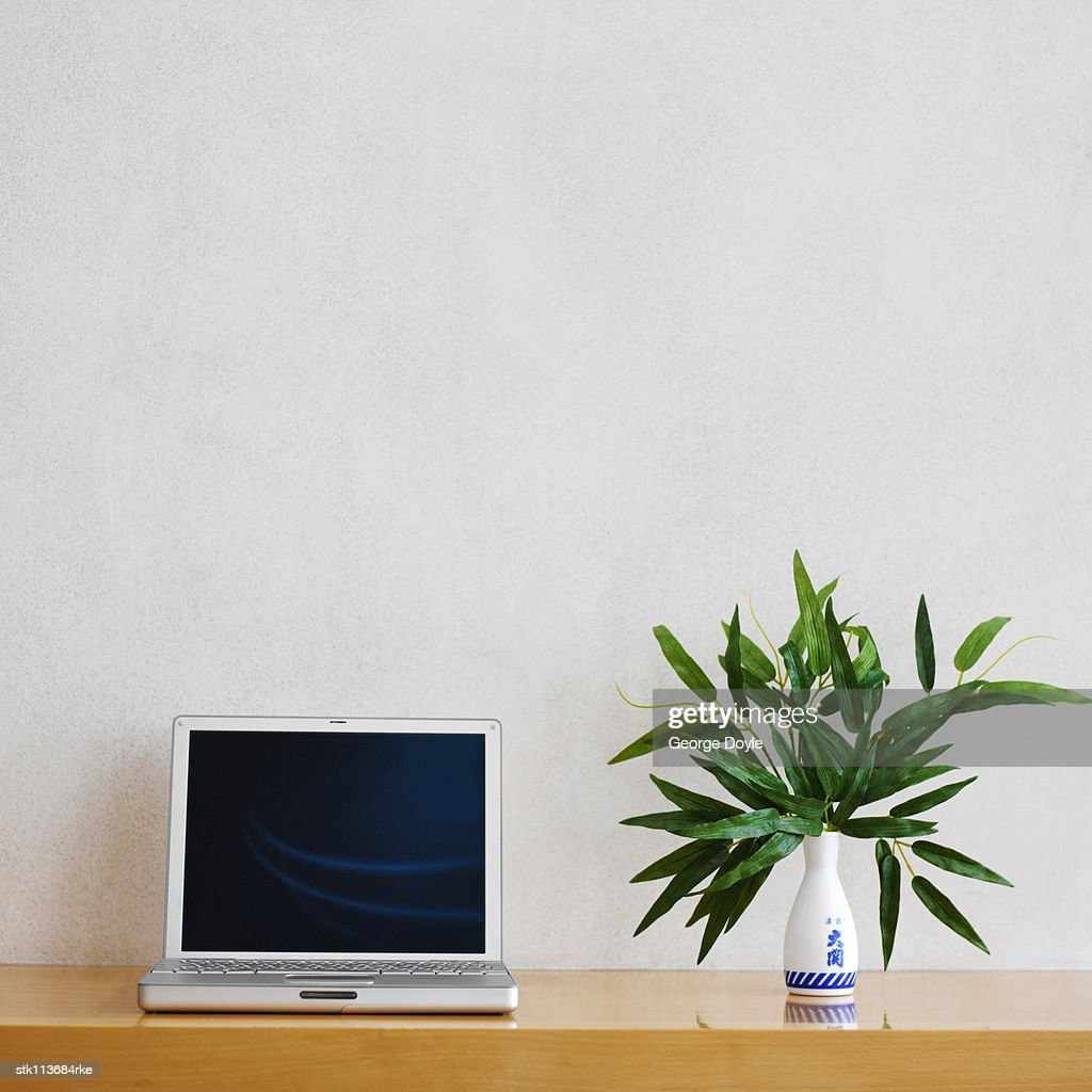 A wooden sideboard with a laptop and a plant : Stock Photo