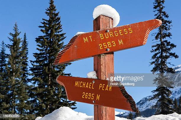 Wooden signpost in snow with mountain