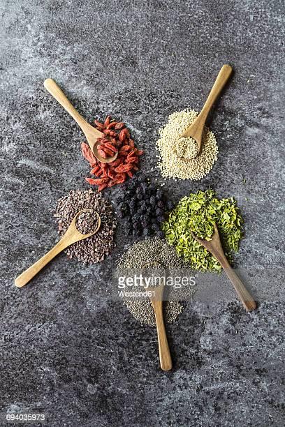 wooden spoons of chokeberries, chia, aronia, quinoa, moringa and wolfberries - moringa tree stock photos and pictures