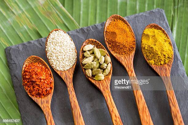 Wooden spoons with different spices