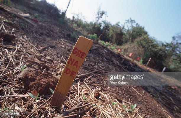 Wooden stake in the ground marked with the word 'grenade' indicates the presence of unexploded ordnance. Millions of anti-personnel mines still...
