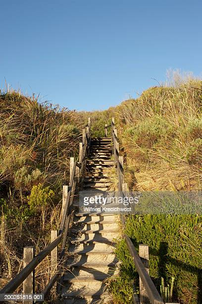 Wooden steps up dune to beach