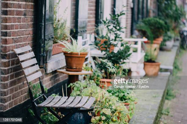 wooden stool standing next to potted plants in street backyards in amsterdam, netherlands. - urban garden stock pictures, royalty-free photos & images