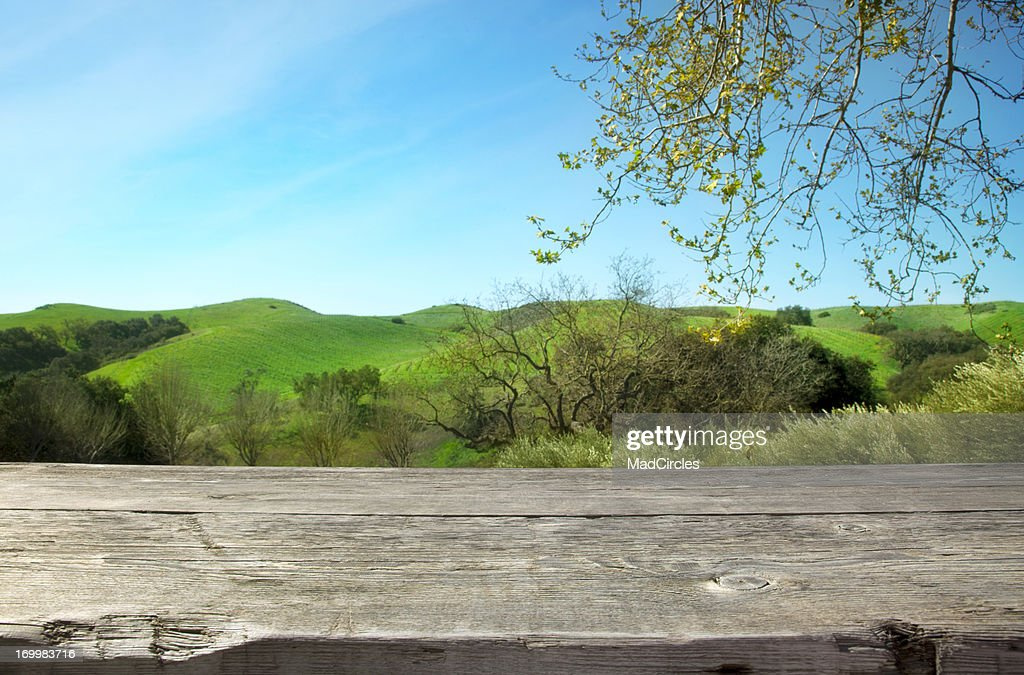 Wooden table with nature background : Stock Photo