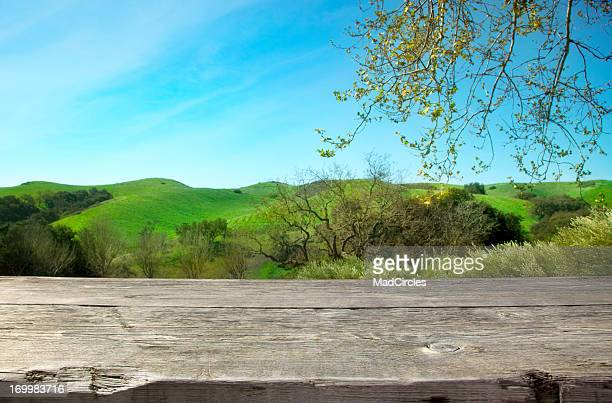 Wooden table with nature background