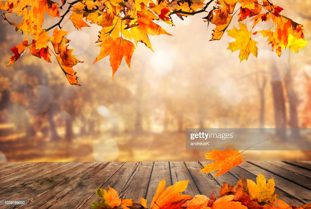 Wooden table with orange leaves autumn background : Stock Photo