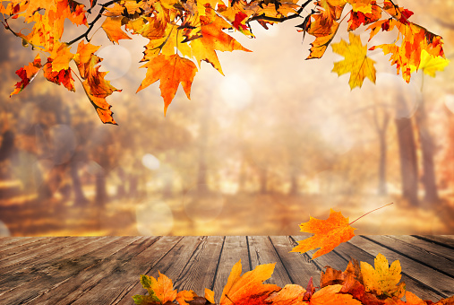 Wooden table with orange leaves autumn background 1029169532
