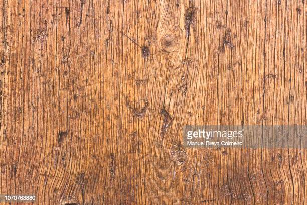 wooden texture - bark stock pictures, royalty-free photos & images