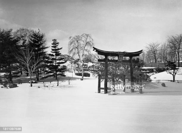 Wooden torii rises up from the blanket of snow covering the Japanese Hill-and-Pond Garden in Brooklyn Botanic Garden, Mount Prospect Park, in the...