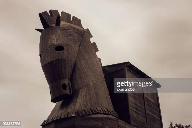 wooden trojan horse in troy - cavallo di troia foto e immagini stock