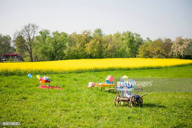 Wooden trolley with balloons and table of children's birthday party on a meadow