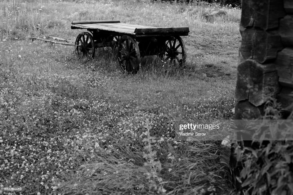 Wooden wagon in rural field : Foto stock