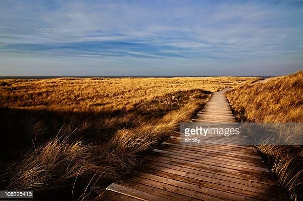 Hölzerner Fußweg durch Feld-Insel Sylt (Deutschland