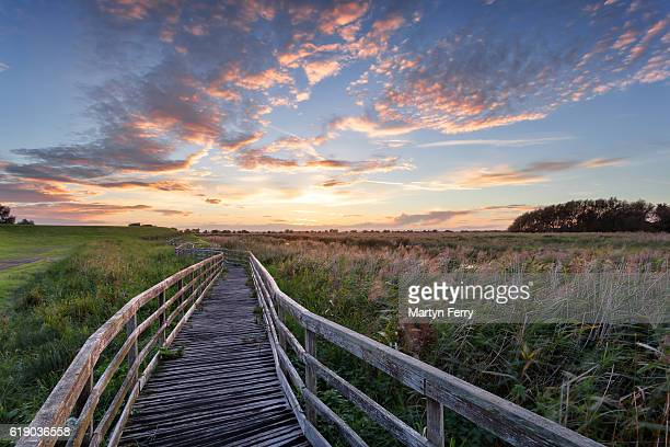 wooden walkway at sunset at ouse washes, the fens, cambridgeshire, east anglia, uk - east anglia stock pictures, royalty-free photos & images